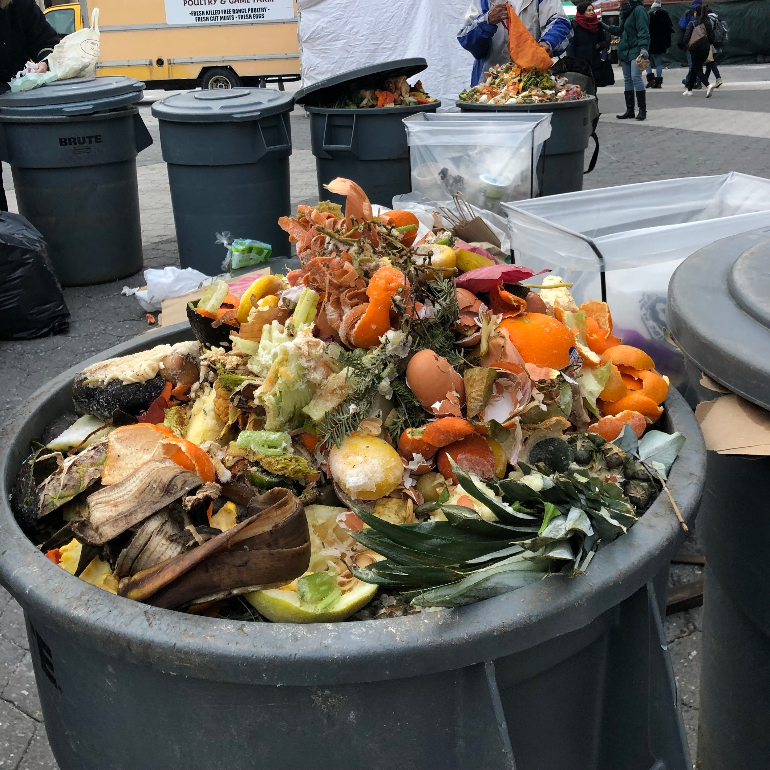 An overflowing food scraps bin at Union Square. Have you ever seen anything so beautiful!?!