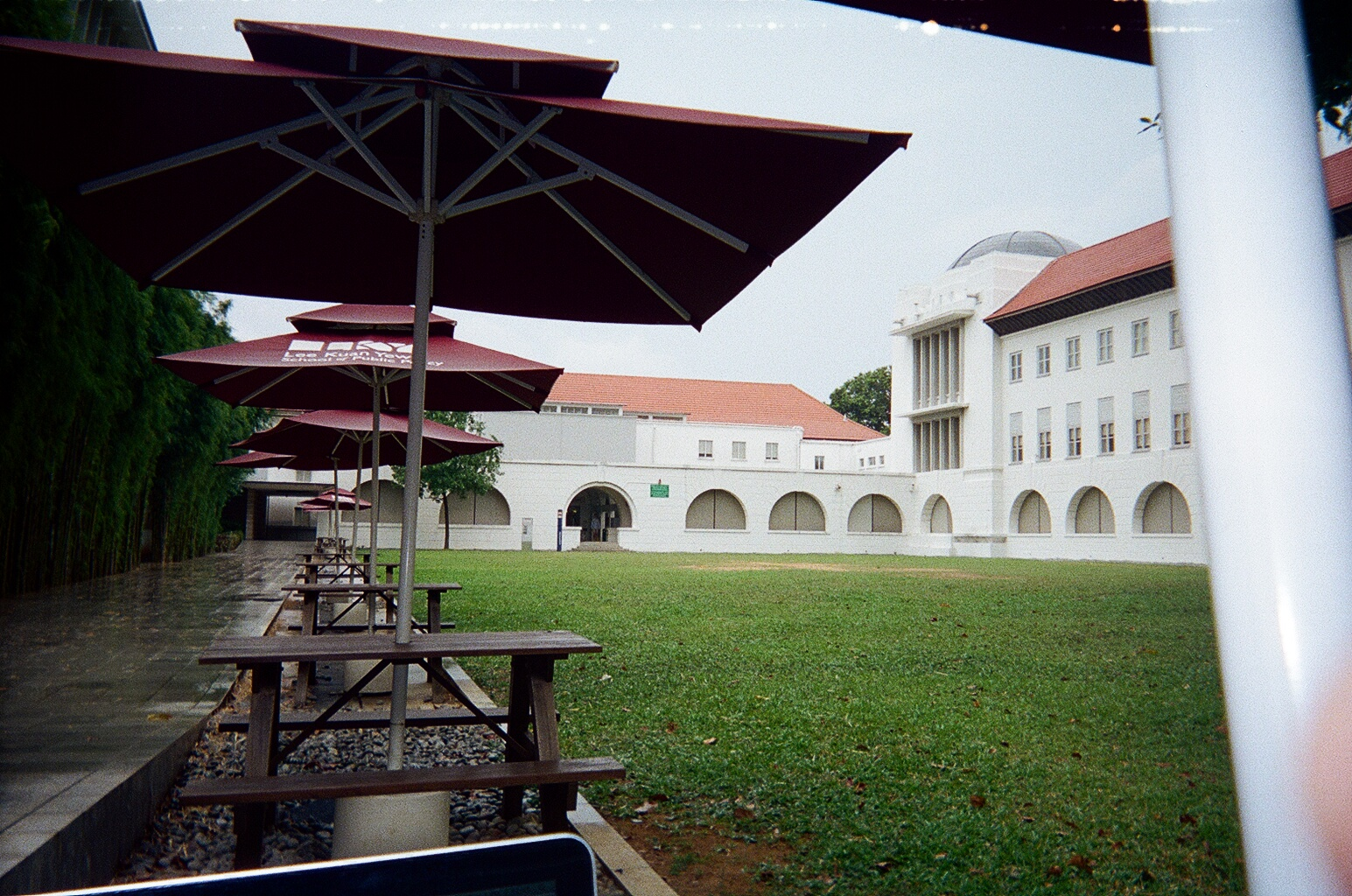 A rainy day on the Lower Quad
