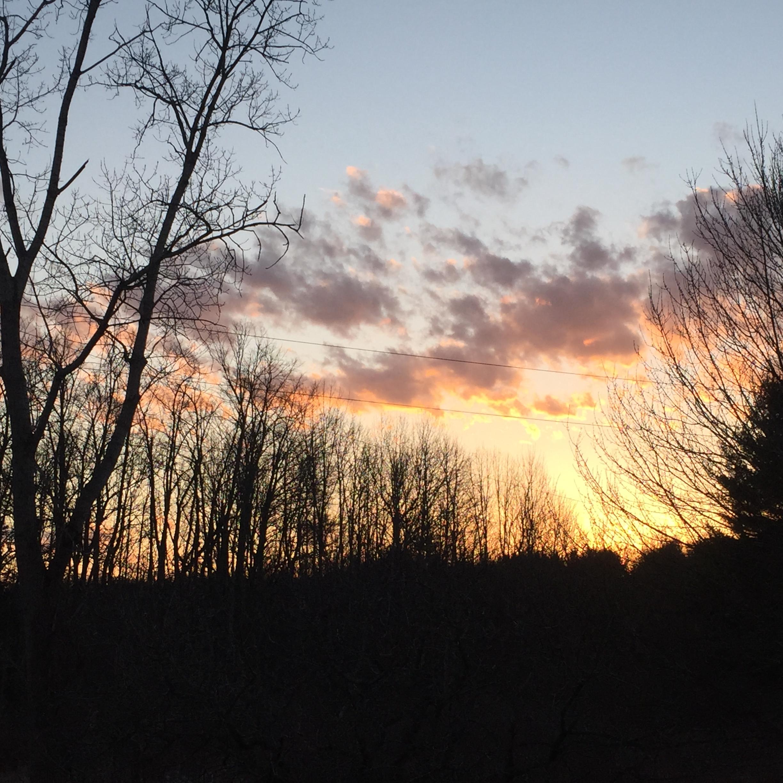 sunset? fire? firmament?