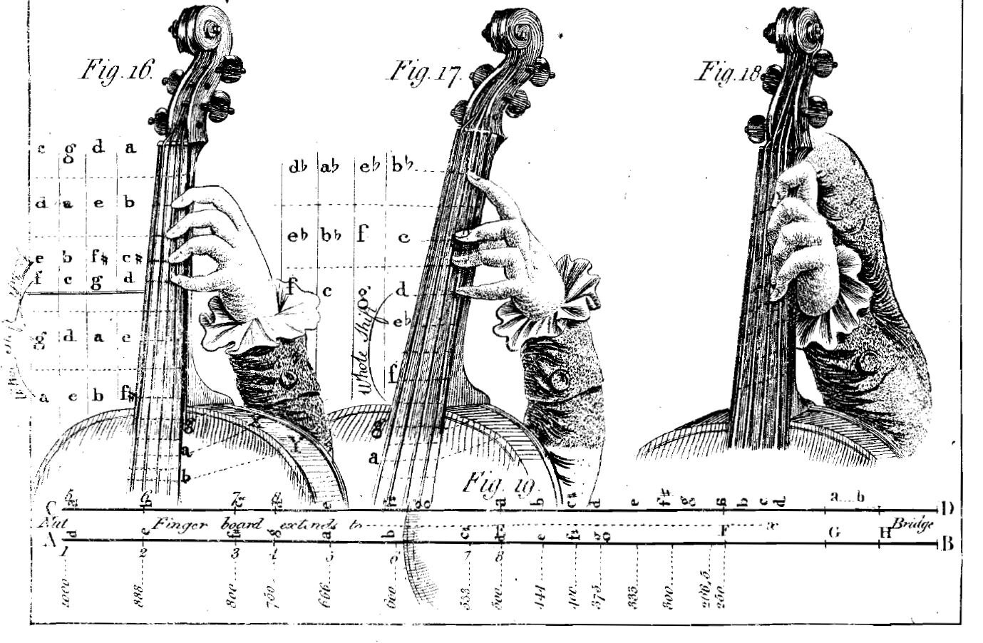 Image from  The Theory and Practice of Fingering the Violoncello  by John Gunn (1789). Image credit: IMSLP.org