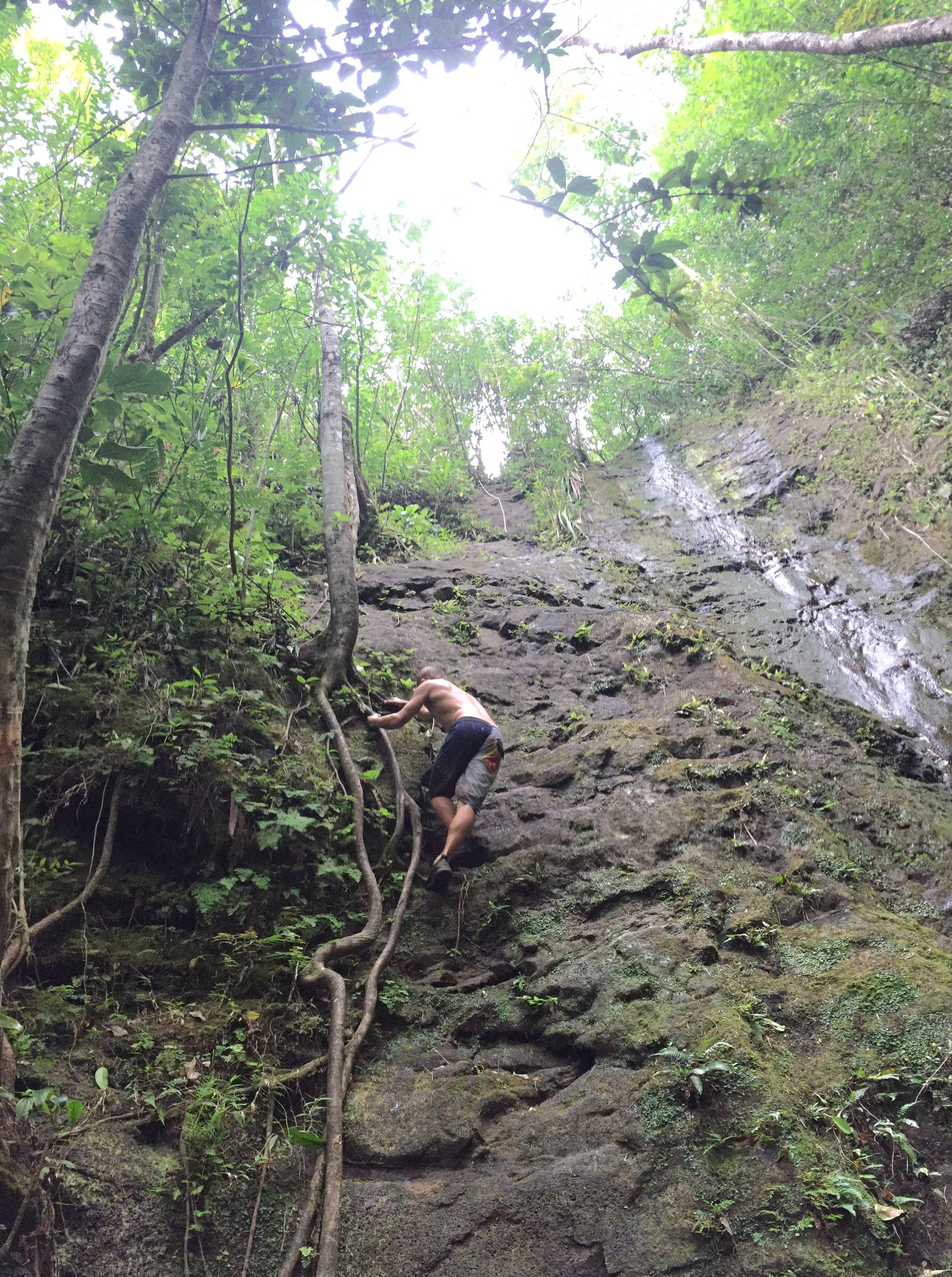 Waiakeakua Trail Manoa