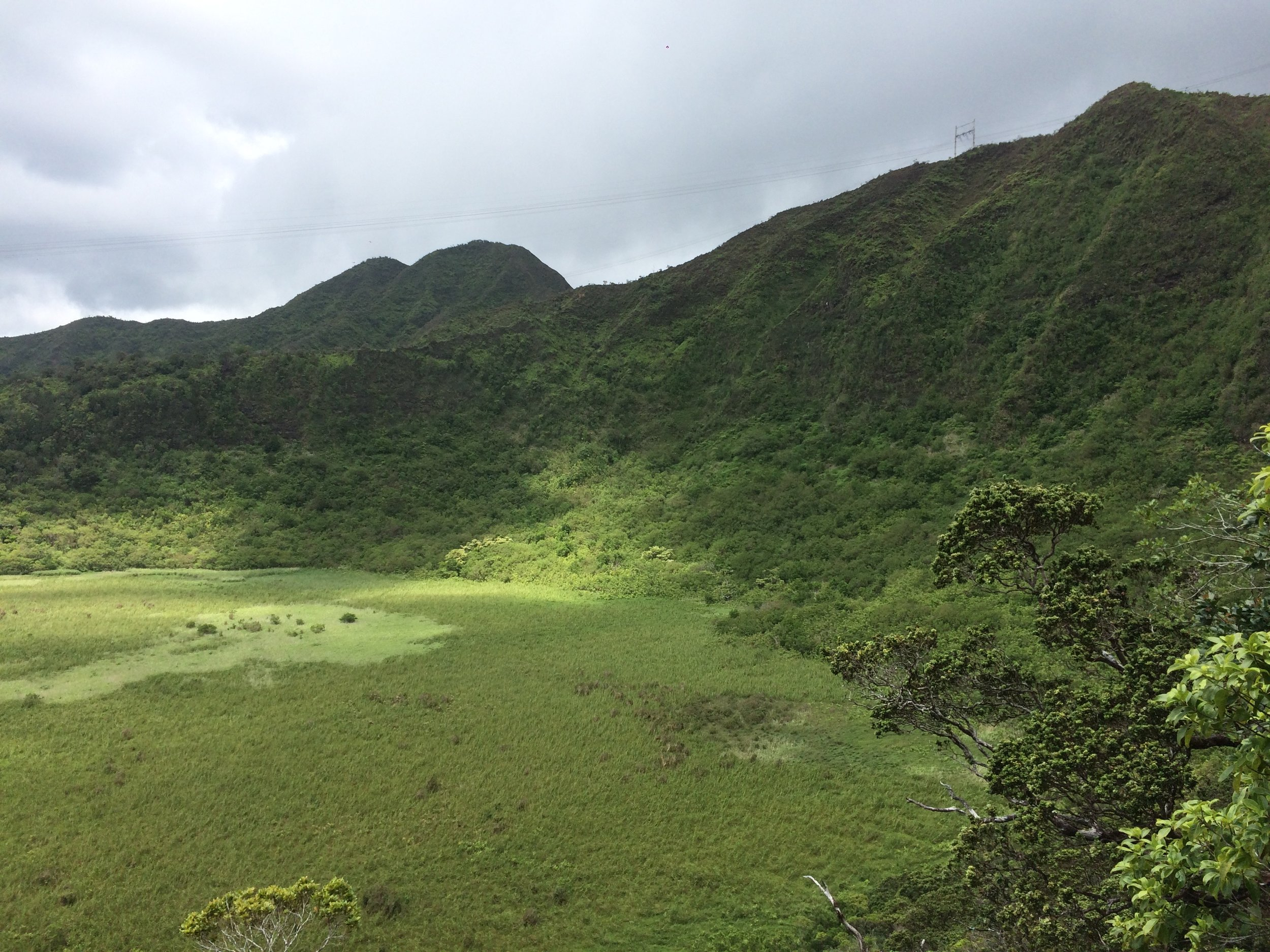 Kaau Crater Hiking
