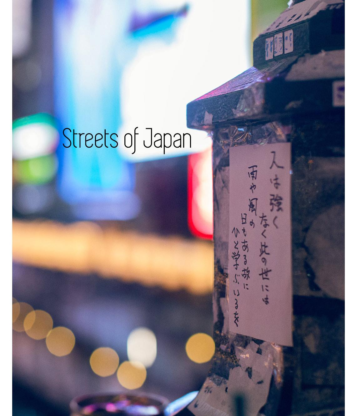 SteveDeVriendt_JapanBook.jpg