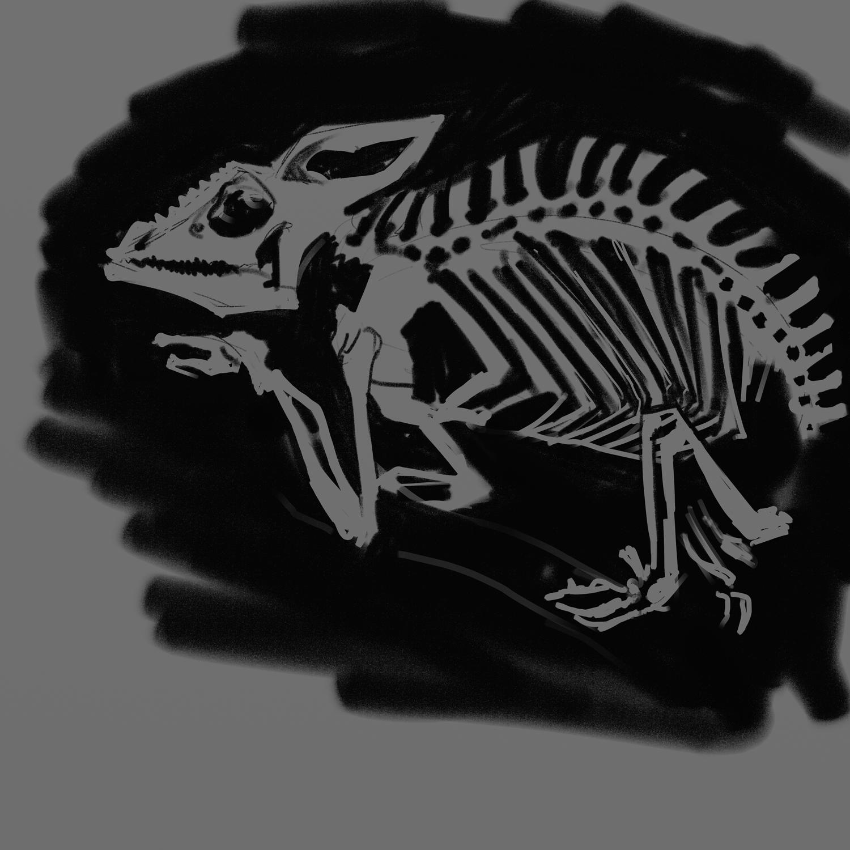 skulls_dfrnt_01.png