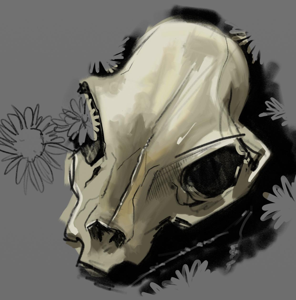 skulls_dfrnt_03.png