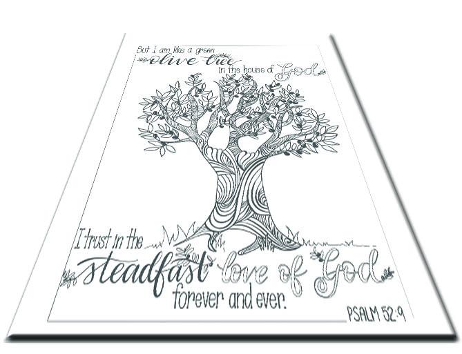 SHOP Olive Tree.jpg