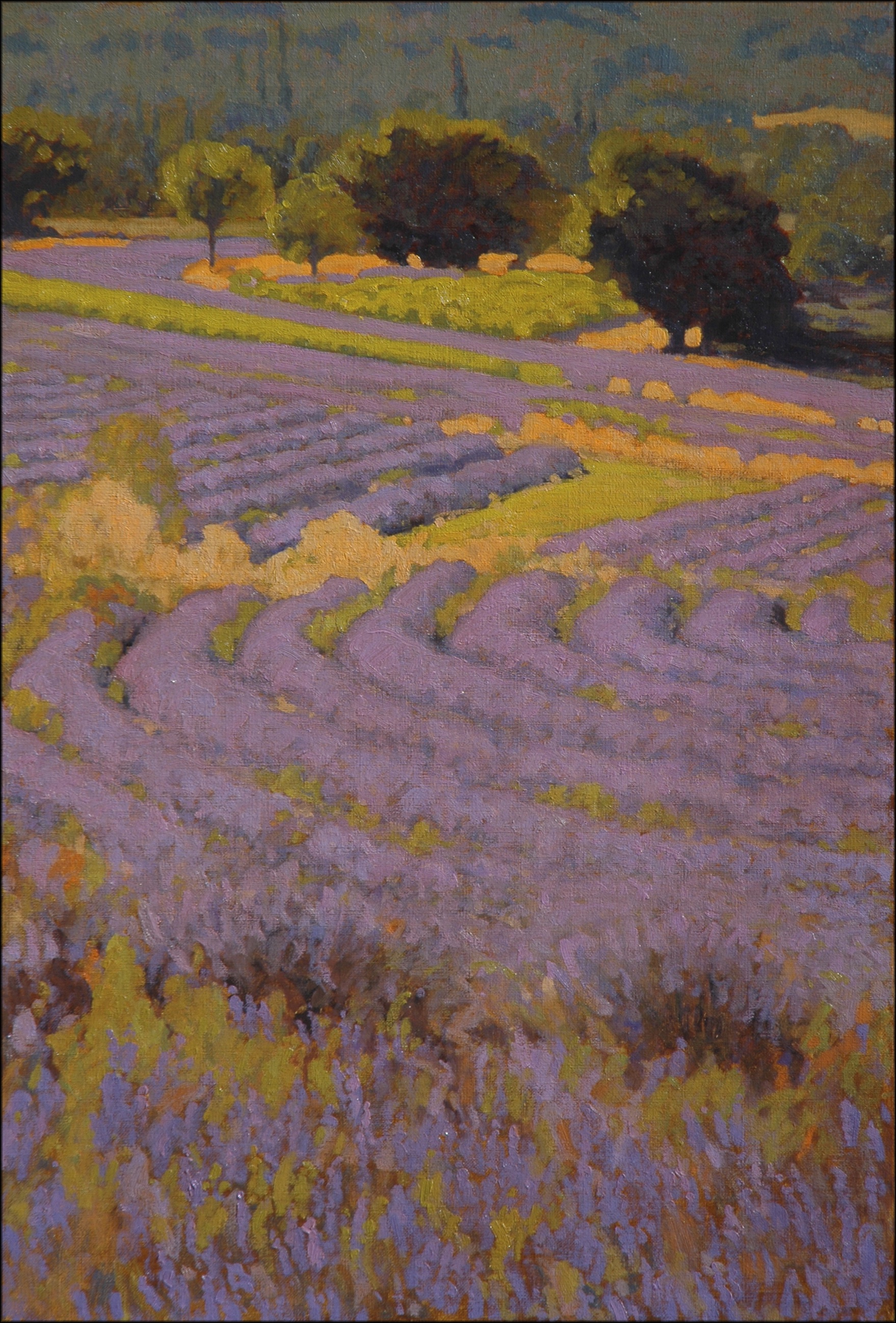 Lavender Patchwork 36 x 24o-l.jpg