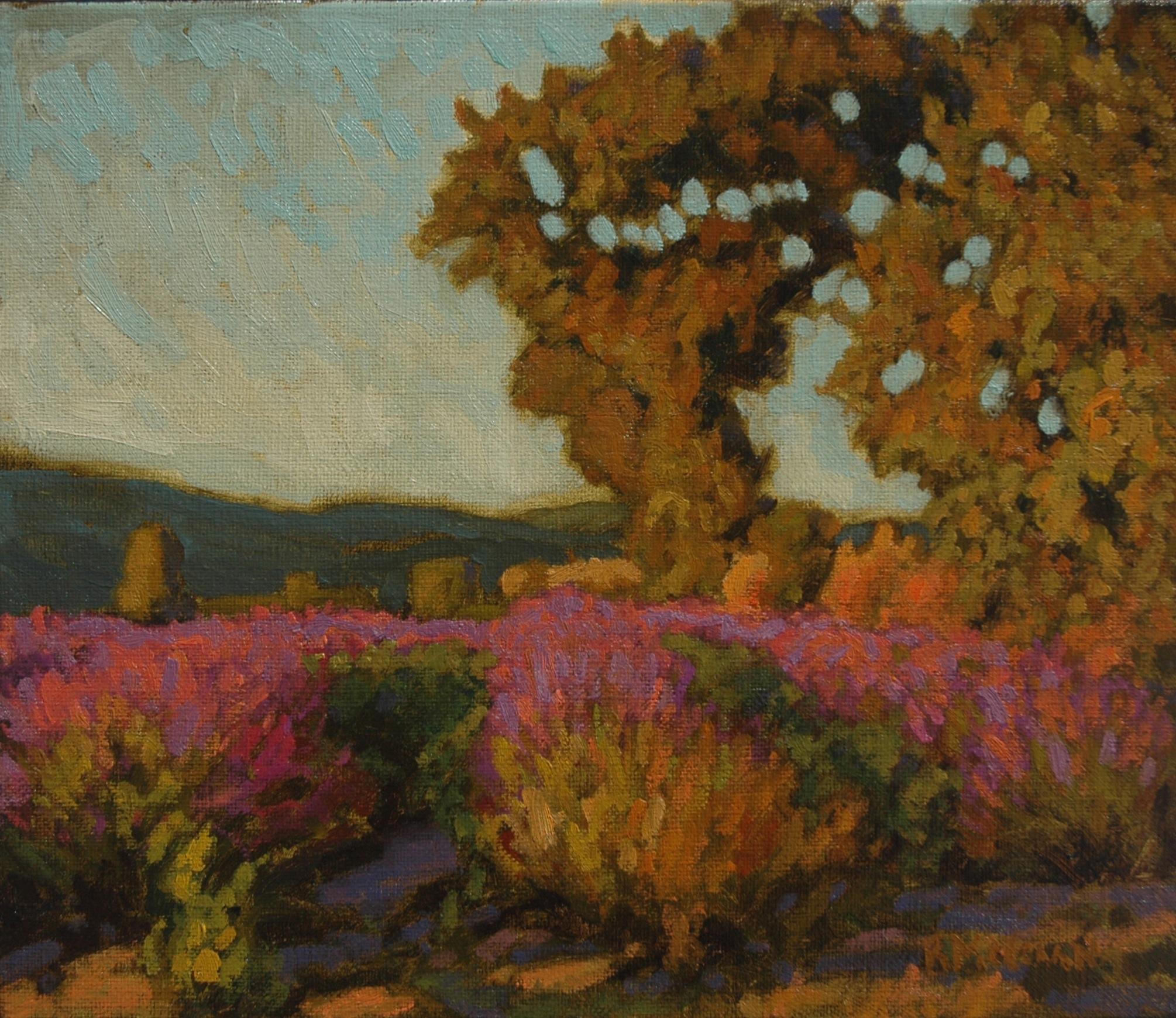 Lavender Sunset 12 x 14 o-l_2.jpg