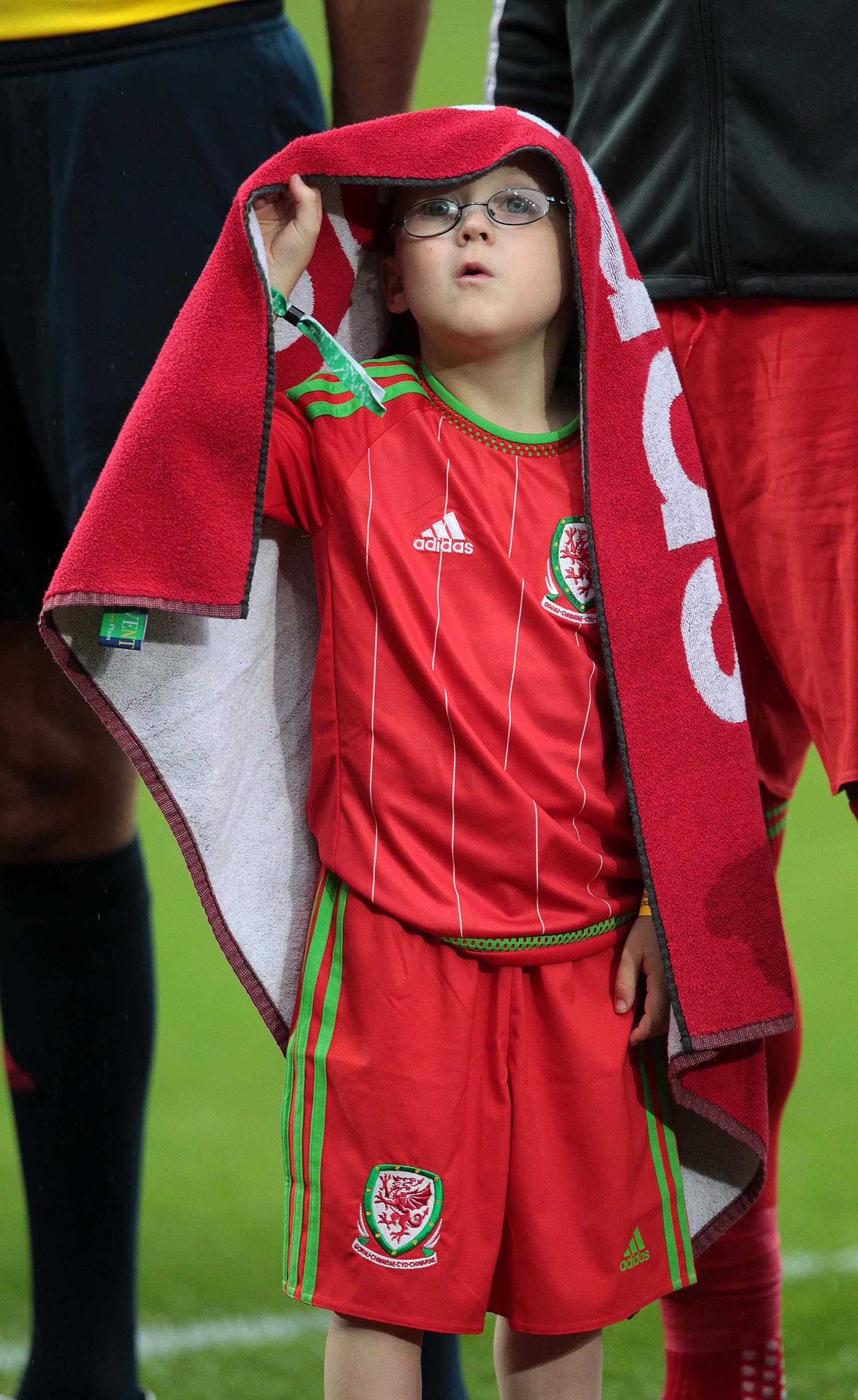 Wales mascot shelters from the rain
