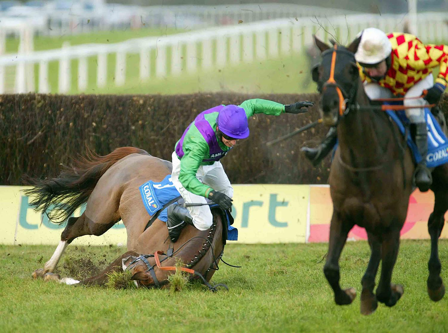 One Knight falls at the last during the Welsh National