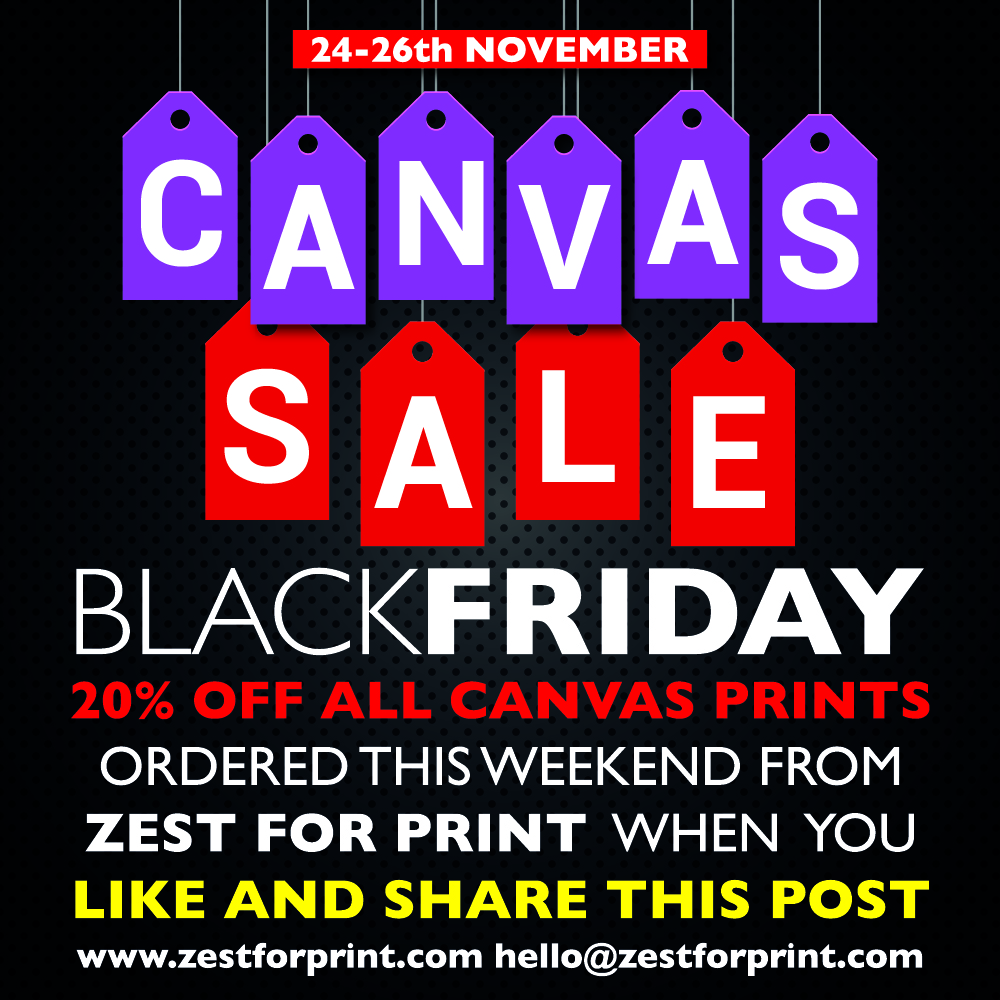 Zest black friday canvas sale.jpg