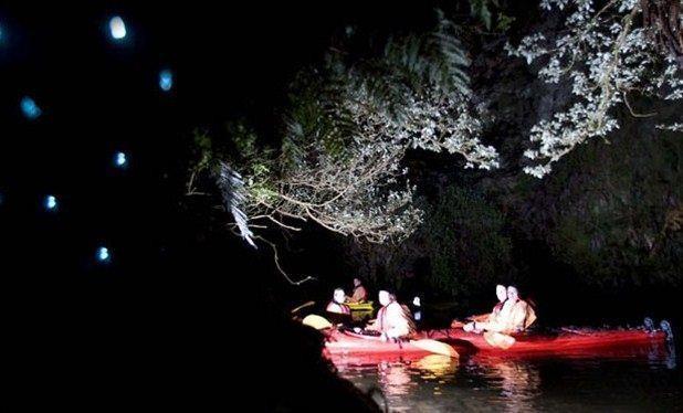 Kayaks, Campfires & Glowworms