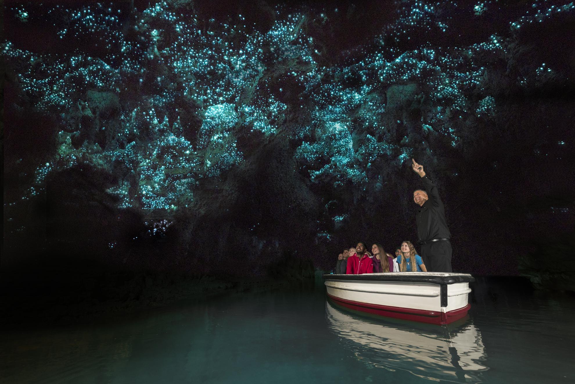 Waitomo Glowworms Tours