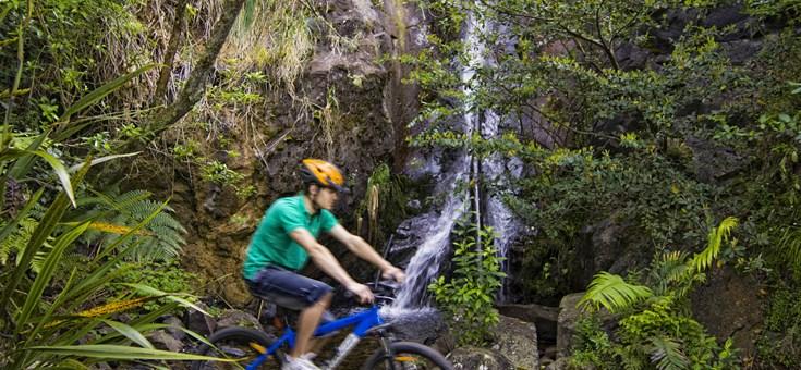 Cycle Trails Waikato