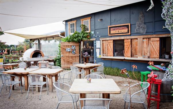 The Lilypad Cafe
