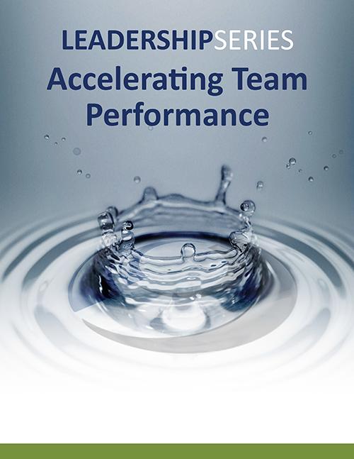 Accelerating Team Performance Program Description (PDF) »