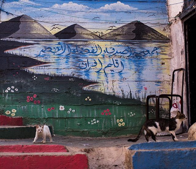 One of many amazing #murals in the alleys of Azrou.