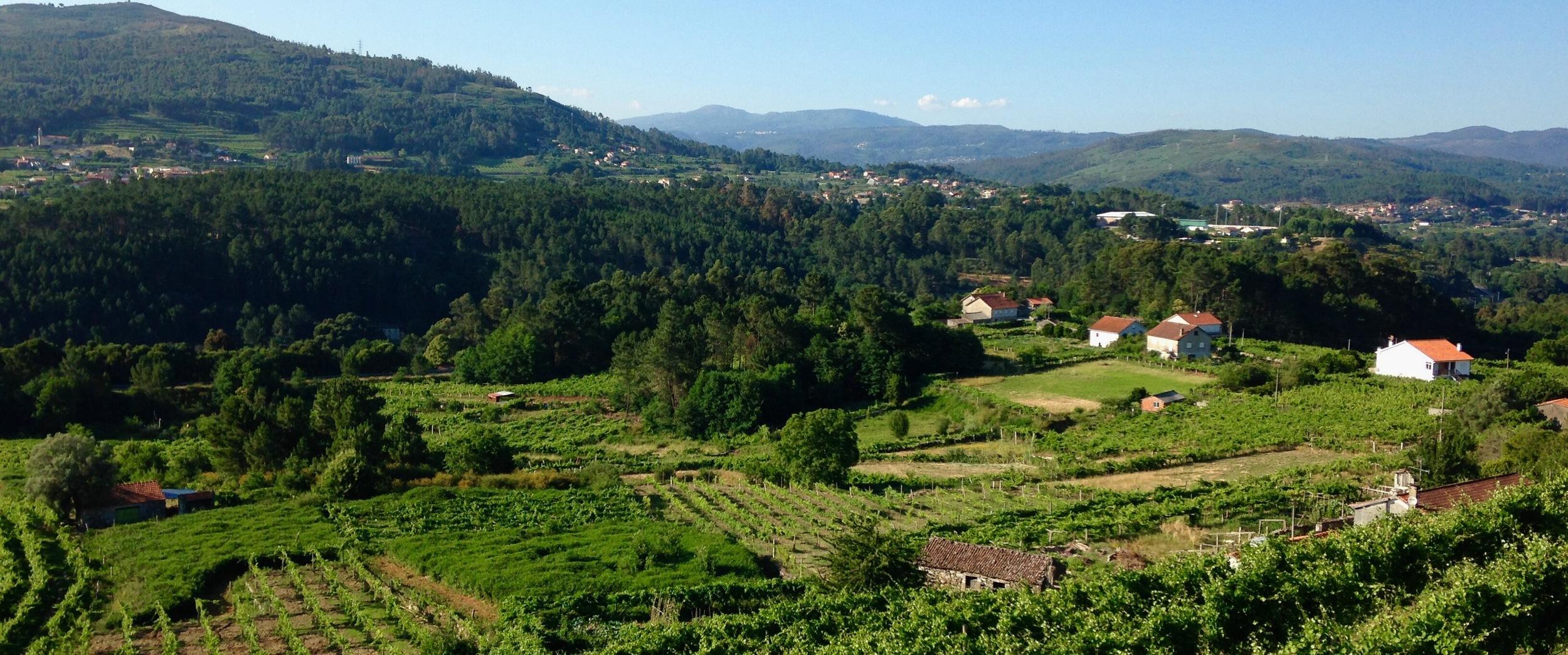 Soalheiro Winery, Melgaço, Portugal