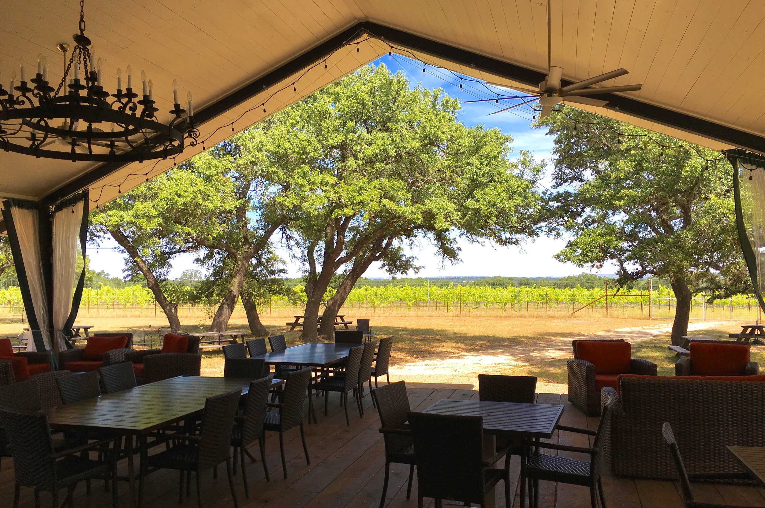 Lewis Wines in Texas Hill Country