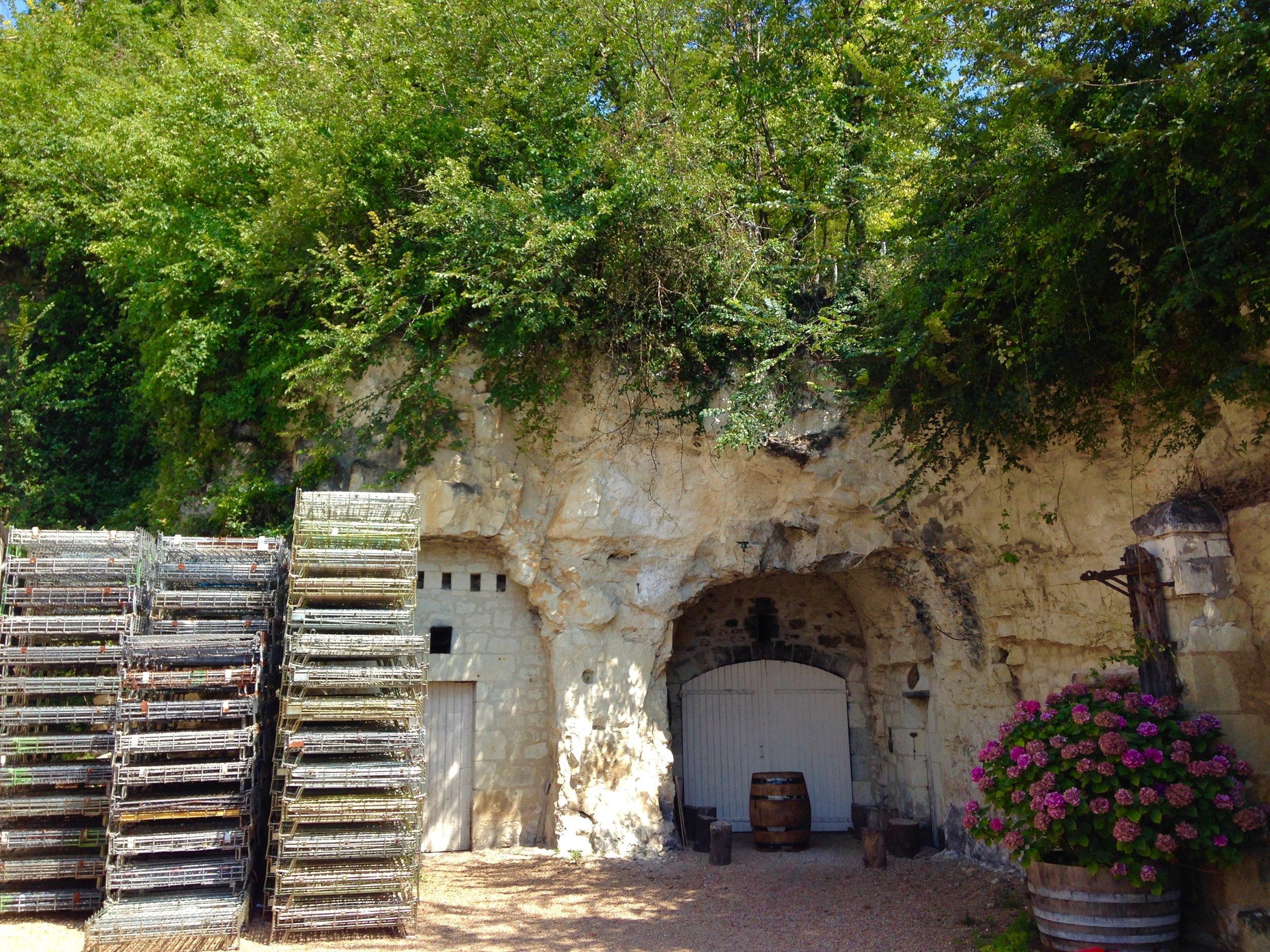 Bernard Baudry, Loire Valley