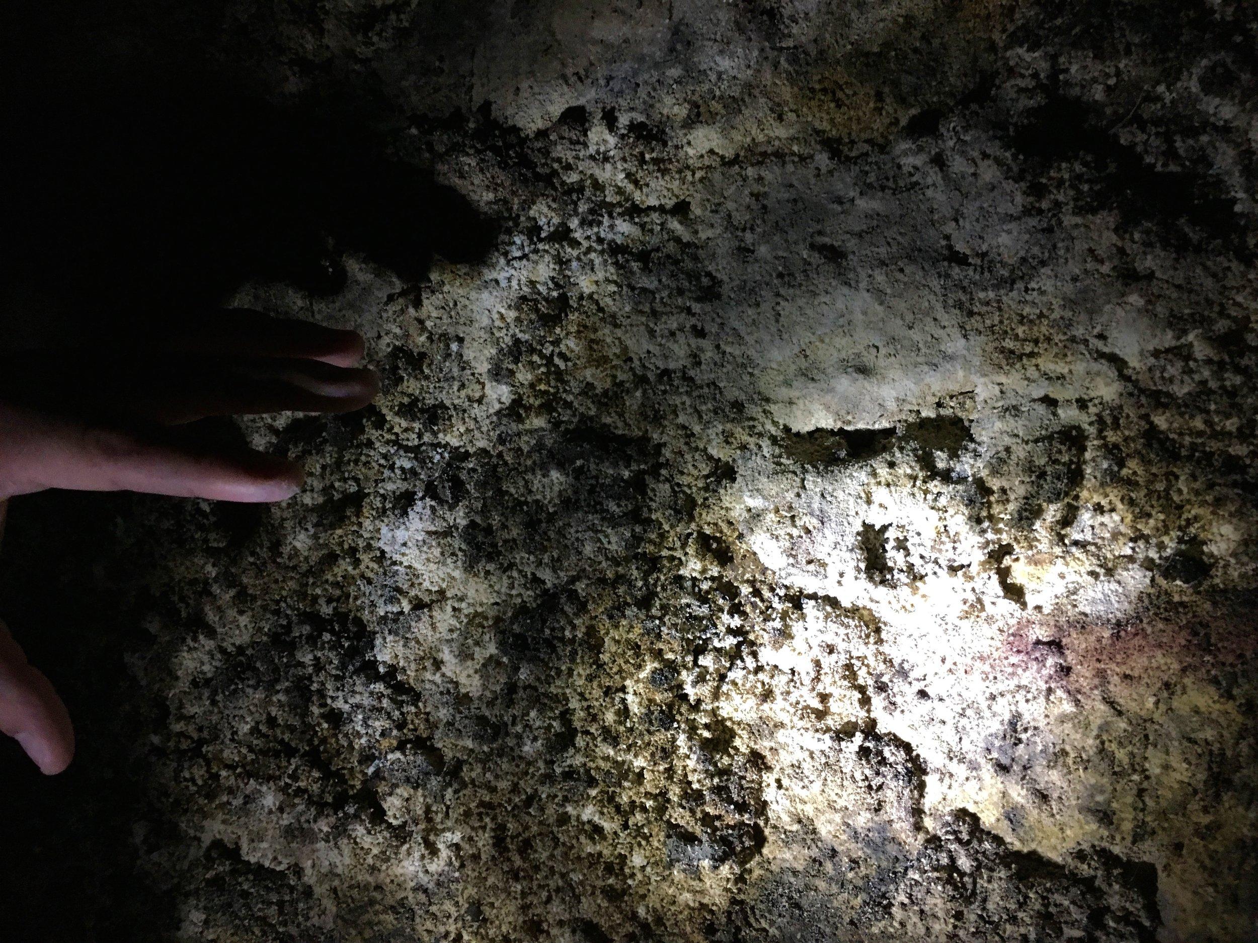 chalk soil
