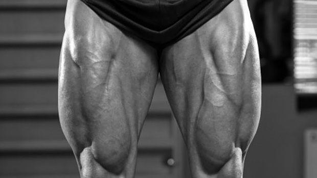 Grow To Show - Legs