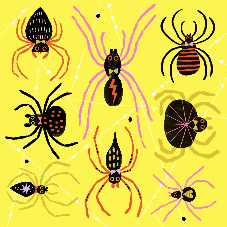 Halloween_Spiders.jpg