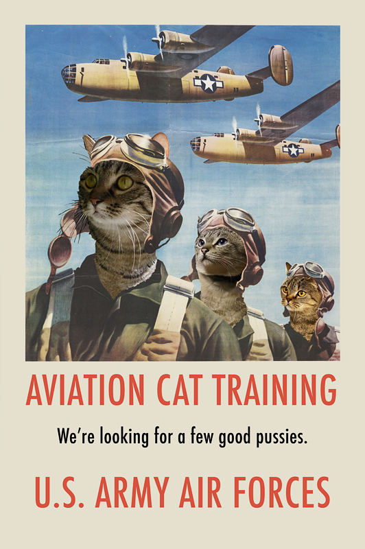 aviation pussy comp.jpg