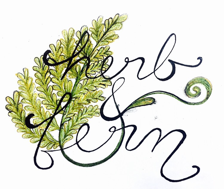Herb and Fern