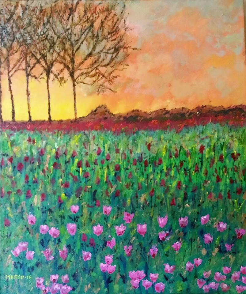 """Campo de Tulipanes"""
