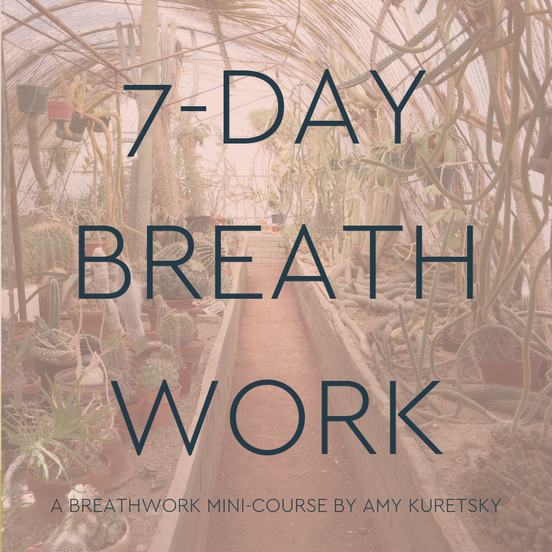7 day breathwork challenge pic.png