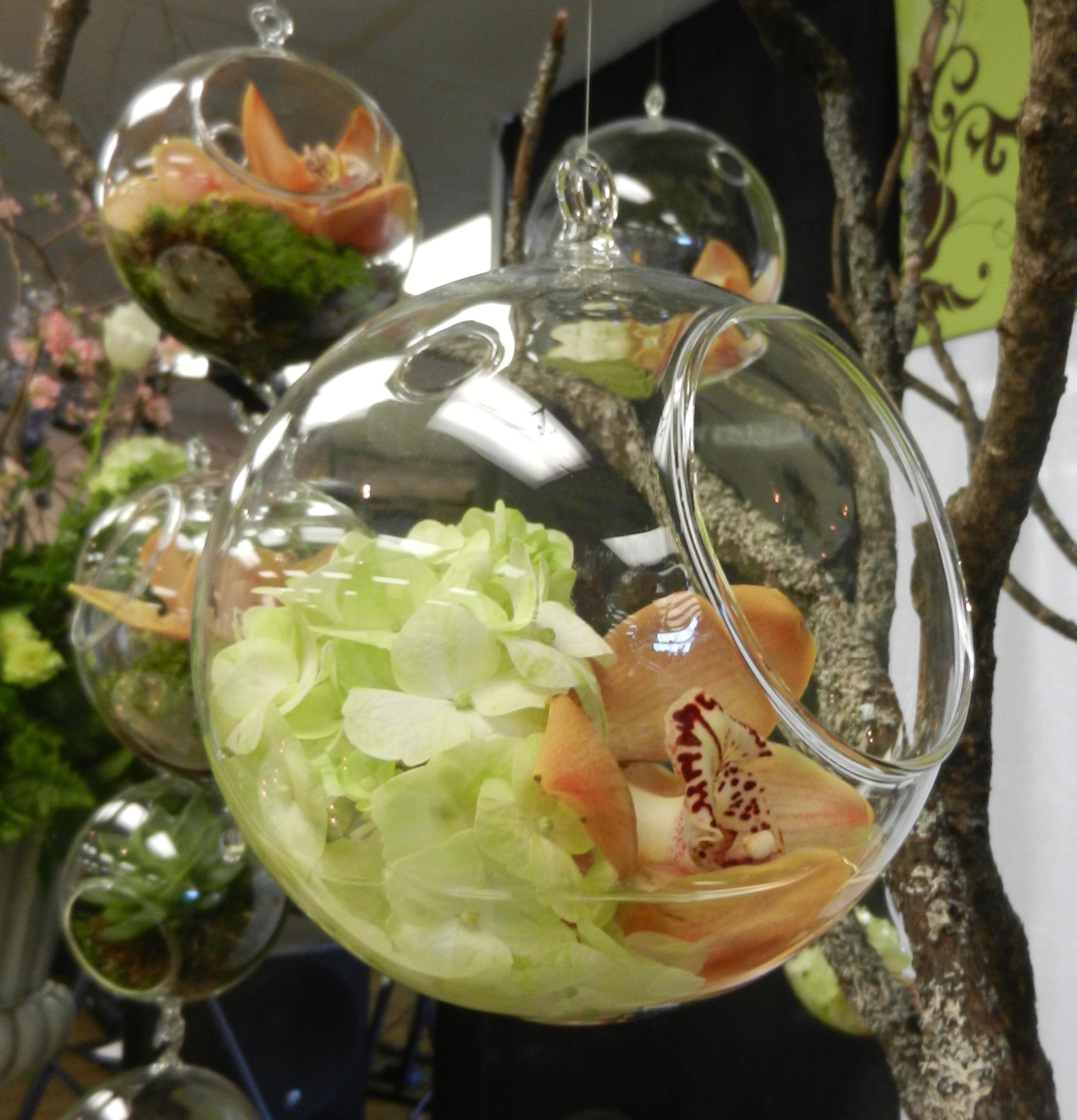 hanging glass bubble.jpeg