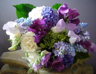 purple_spring.jpeg
