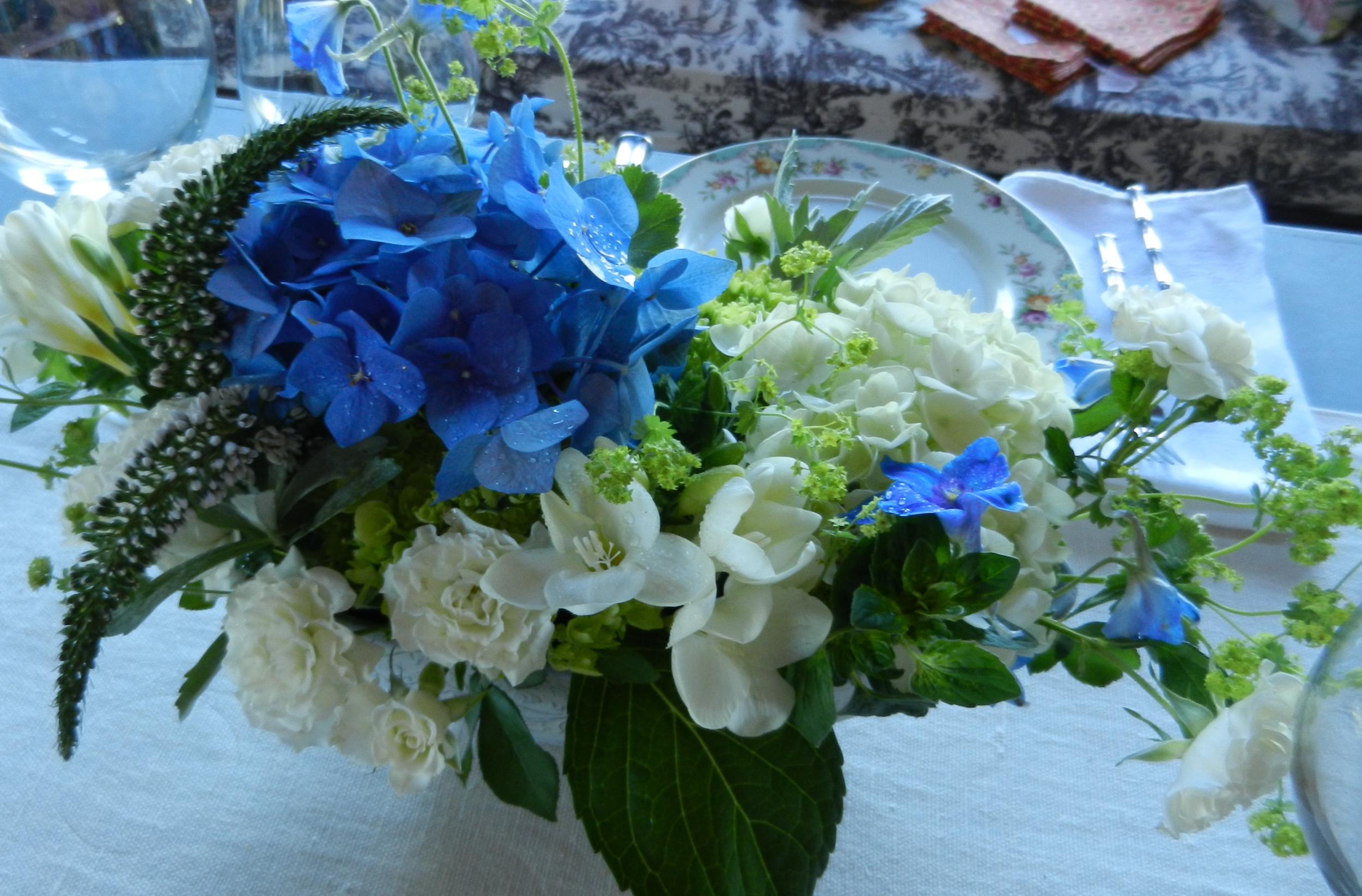 spring blue_white_green.jpg