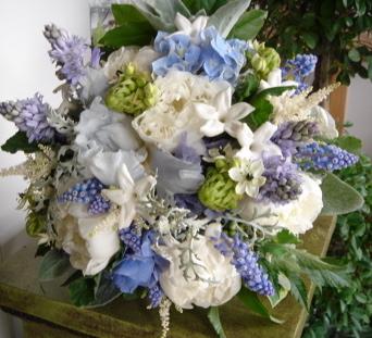 spring_blue.jpeg