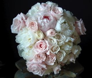 pink_blush-spring.jpeg