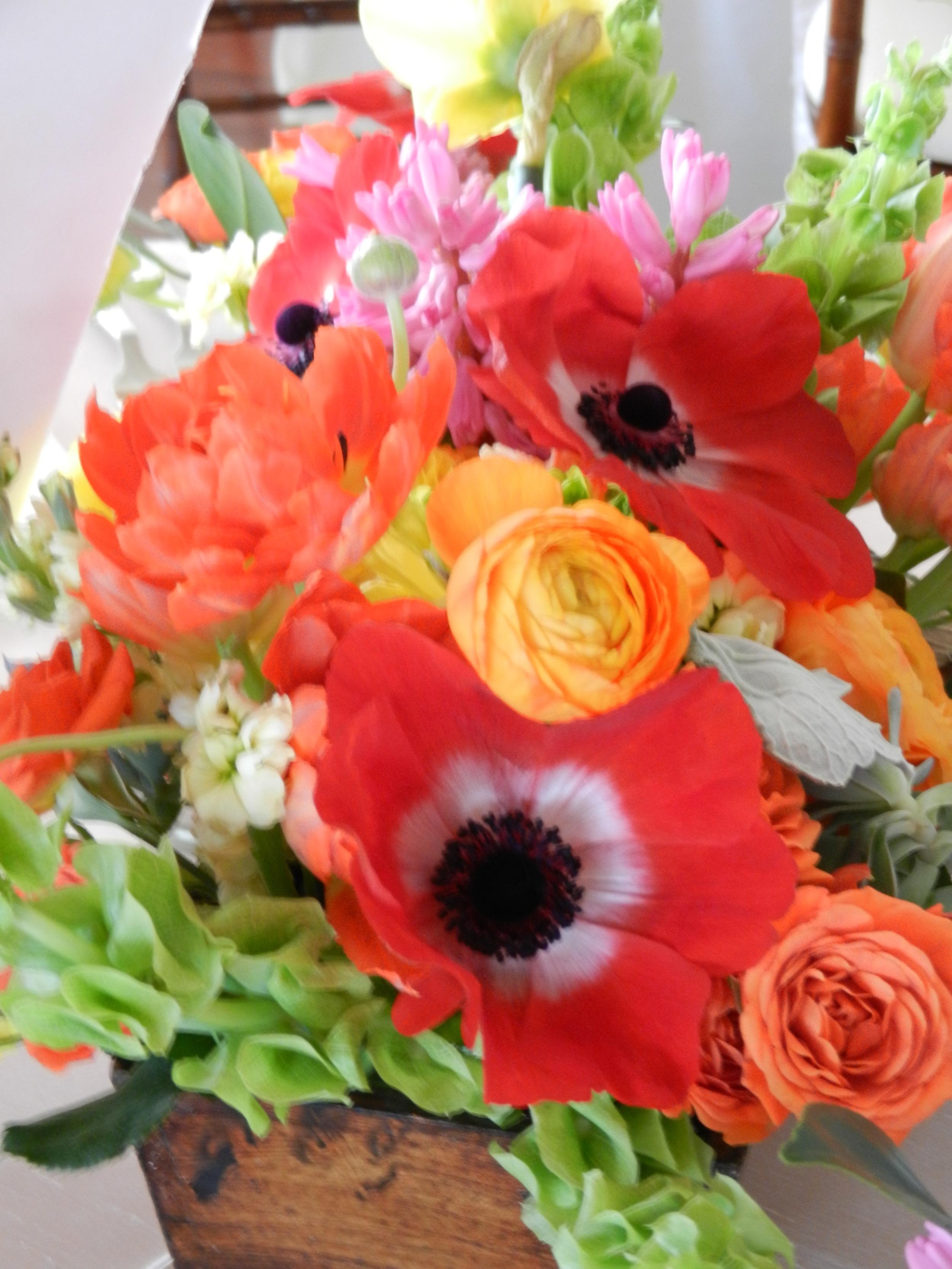 zoom_colorful-spring-box.jpeg