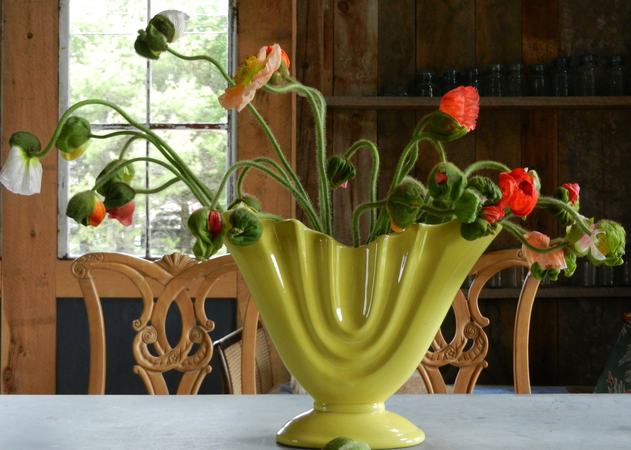 Locally grown Cut Flowers -