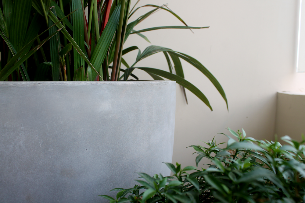 Grey-Cement-Planter.png