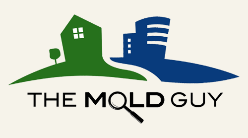 the-mold-guy.png