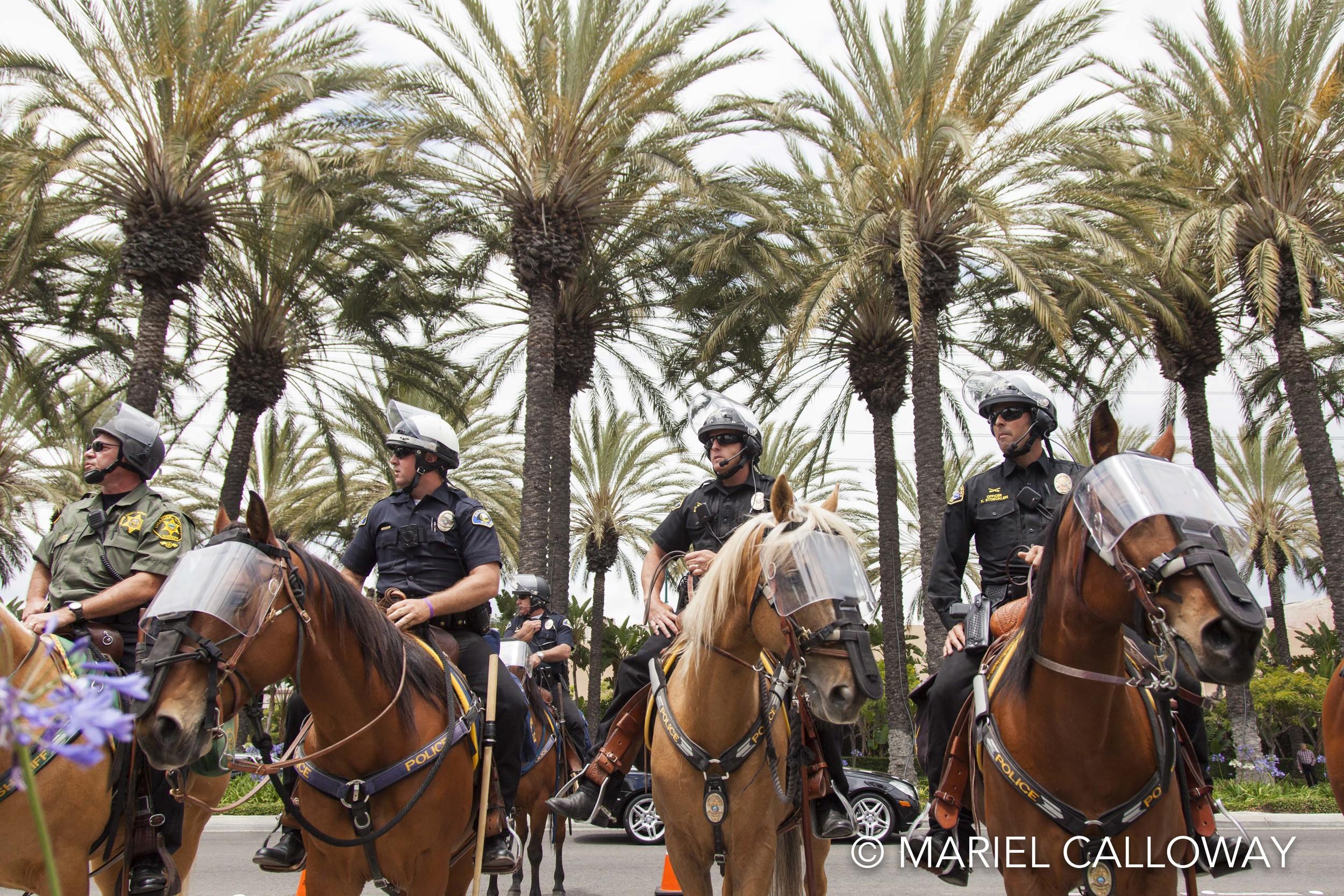 Mariel-Calloway-Donald-Trump-Anaheim-17.jpg