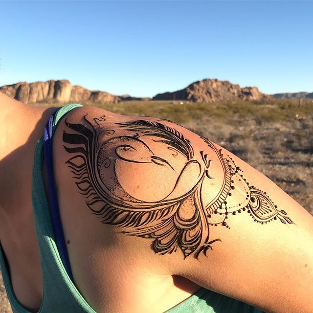 #Jagua in the desert 💙💙💙 bird of prey shoulder protection design for @acarlomagnodvm