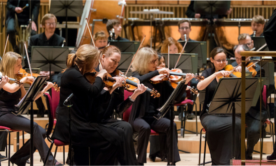 The courageous violins of the Royal LIverpool Philharmonic Orchestra.
