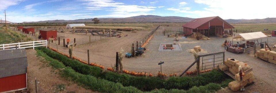 Andelin Farms.jpg