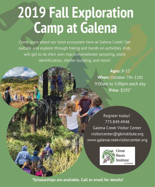 Galena Camp.jpg