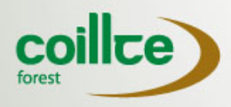 coillte forest.png