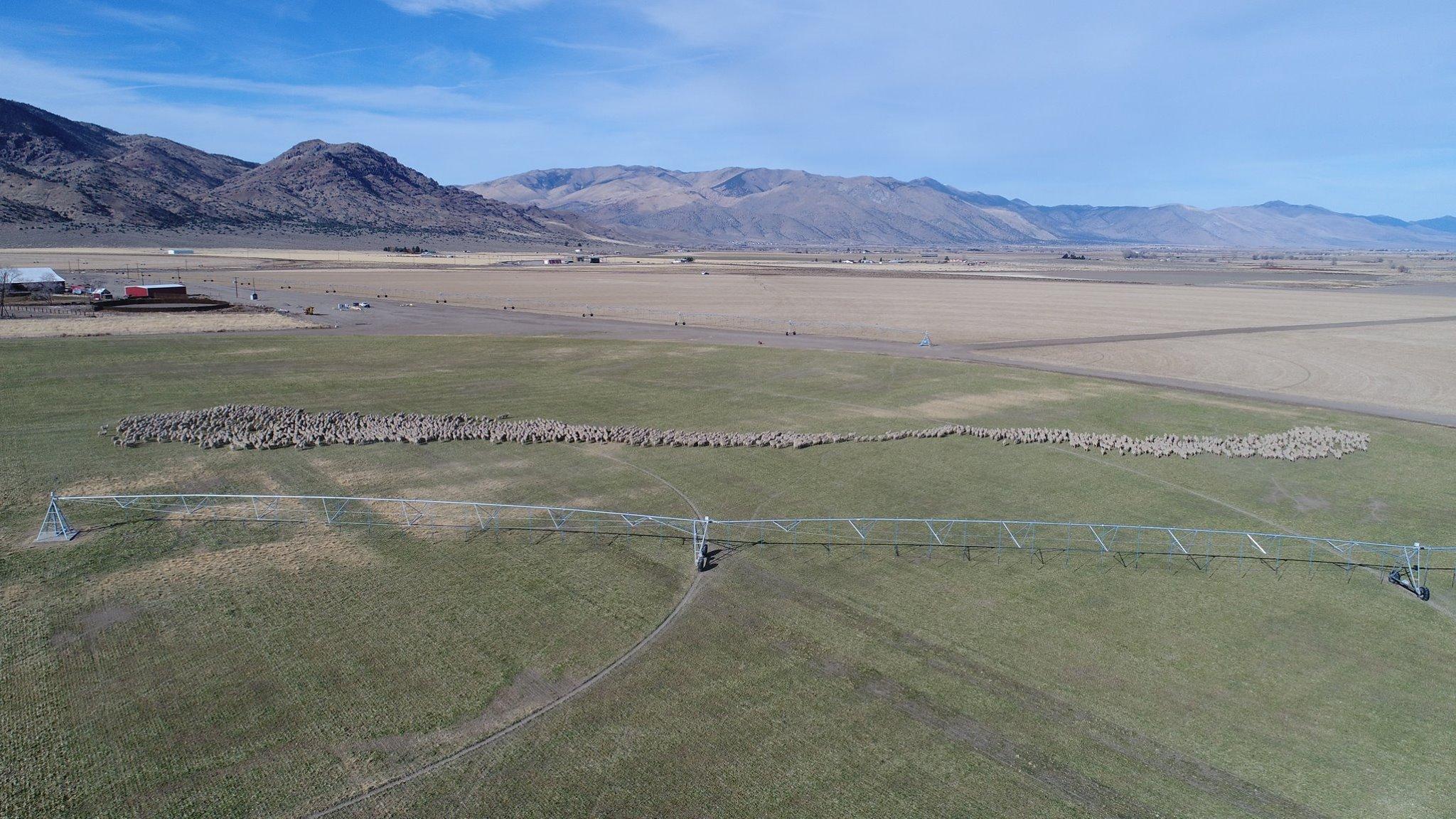 Borda Ranch.jpg