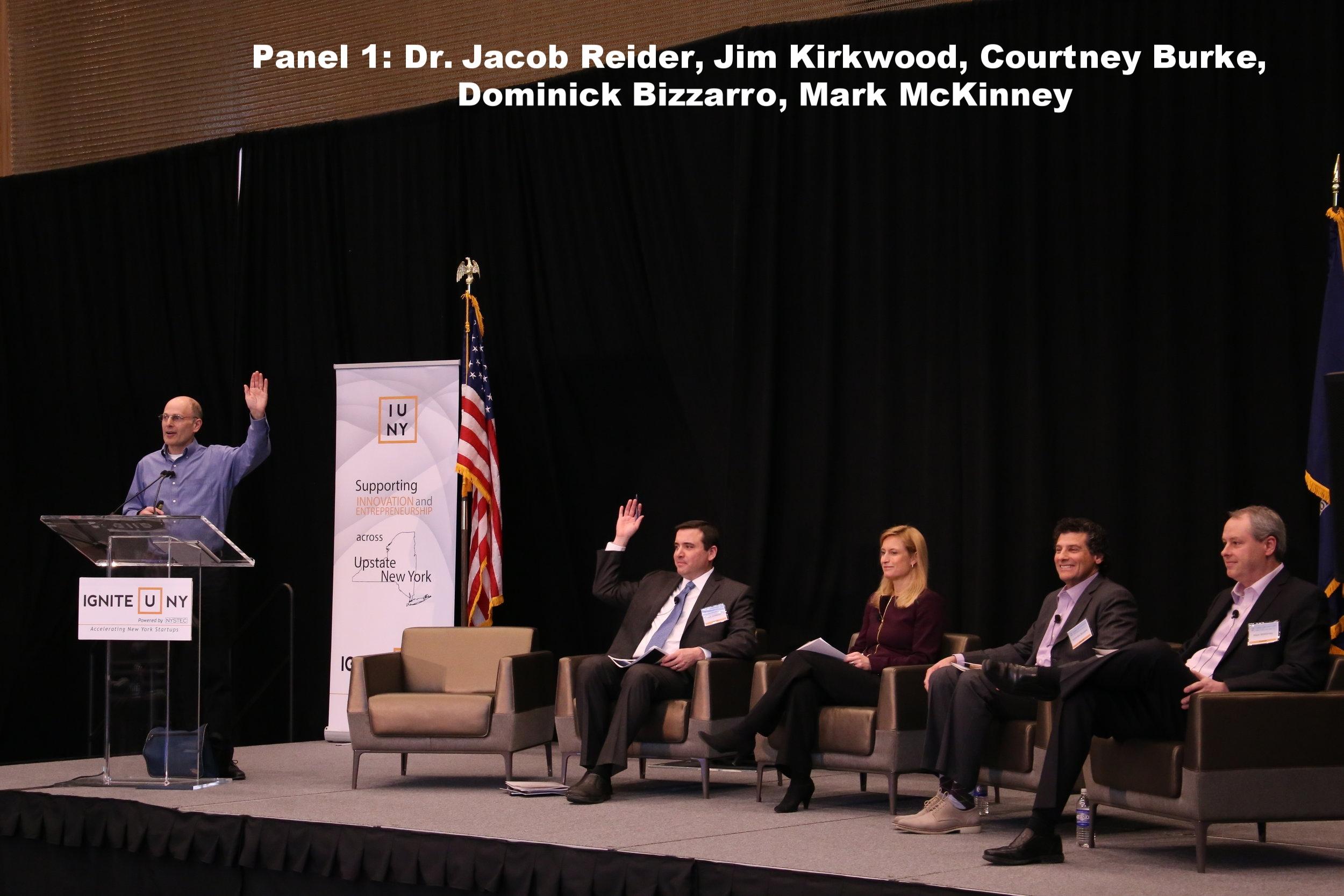 PHIS - Panel 1.JPG