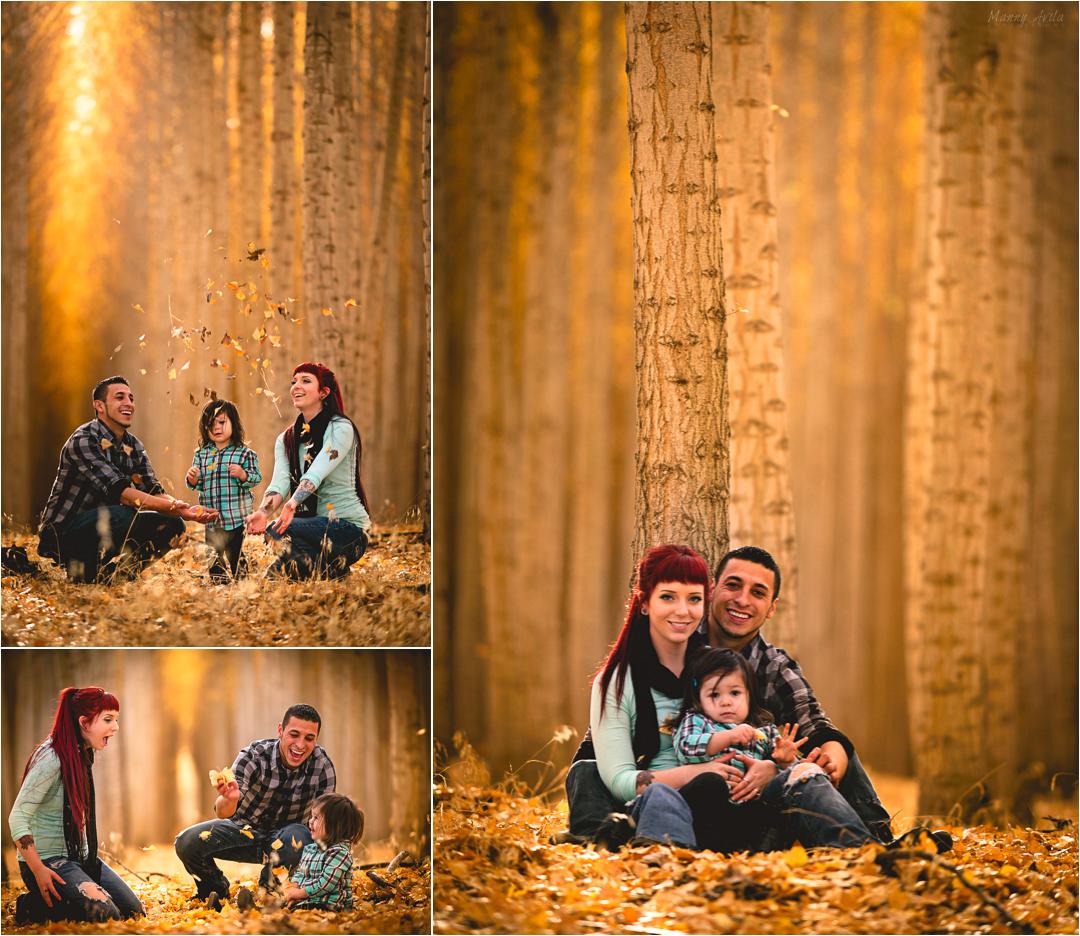 collage1a.jpg