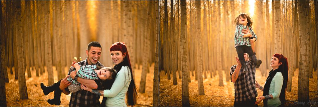 collage5a.jpg